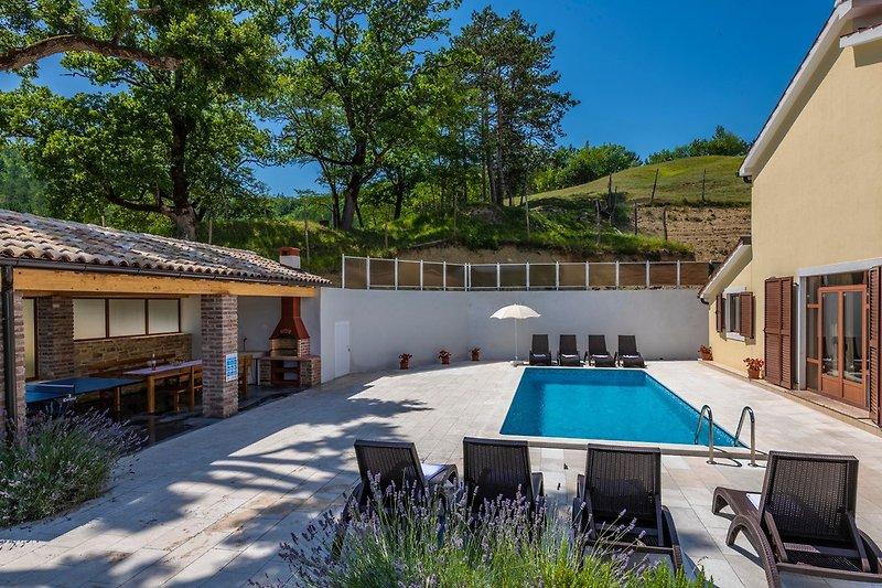 Privater Garten bei klarem Himmel und warmem Wetter