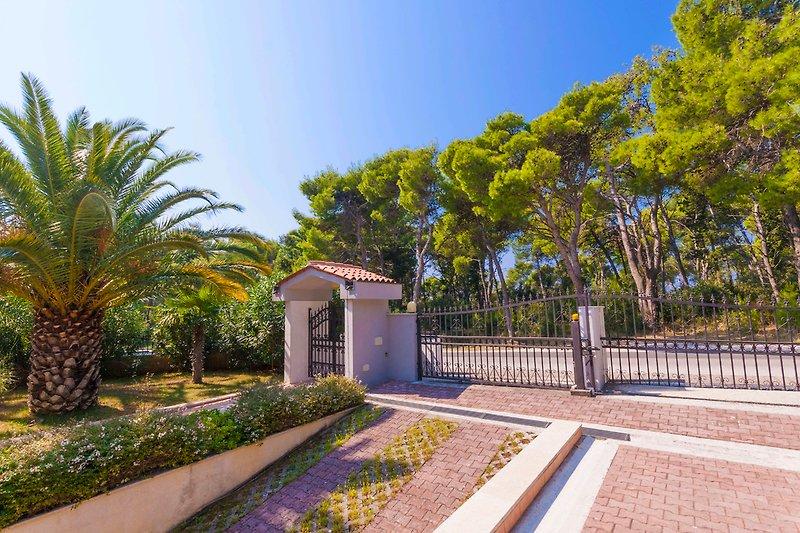 Mediterrane Vegetation rund um die Villa