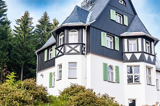 Holiday flat in Altenberg
