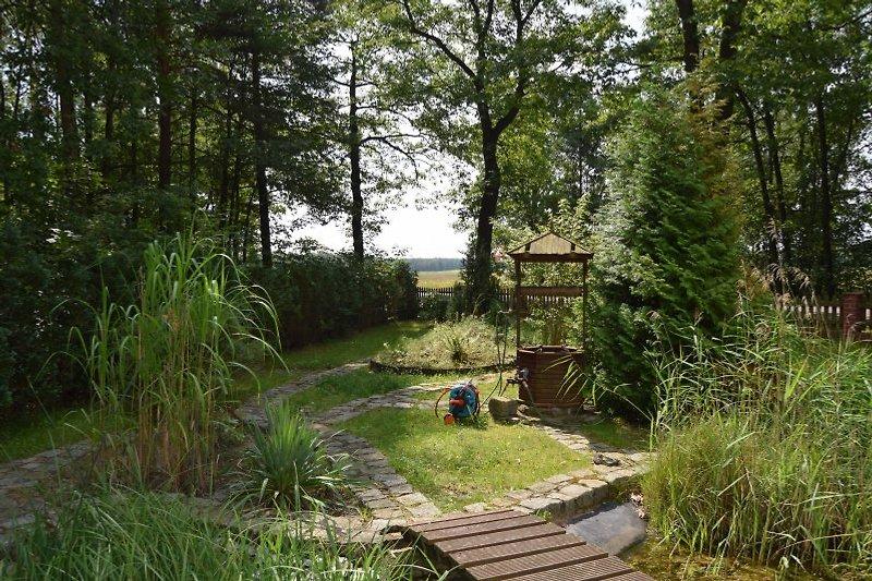 Vorgarten mit Teich