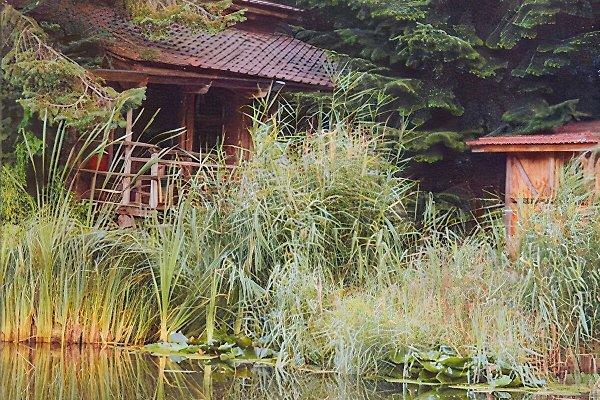 Casa de vacaciones en Münchwald - imágen 1