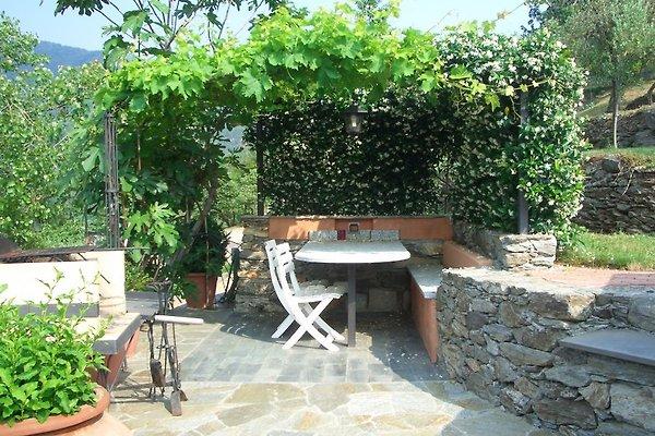 Gartensitzplatz mit Grill