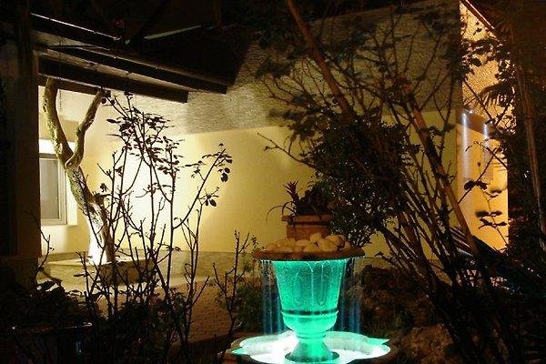 Tanis Vila en Rovinj - imágen 1