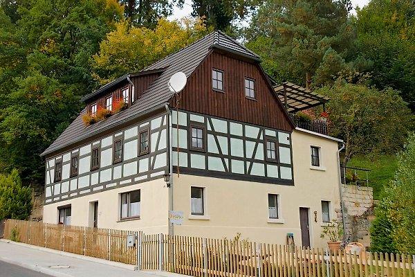 Ferienwohnung Zum Feuersalamander in Bad Schandau - Bild 1