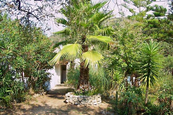 Casa Maria in Coccorino Di Joppolo - immagine 1