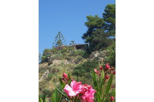 Villa Zappani in Coccorino Di Joppolo - immagine 1