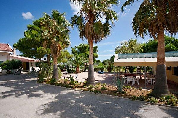 Villa Mare à Vieste - Image 1