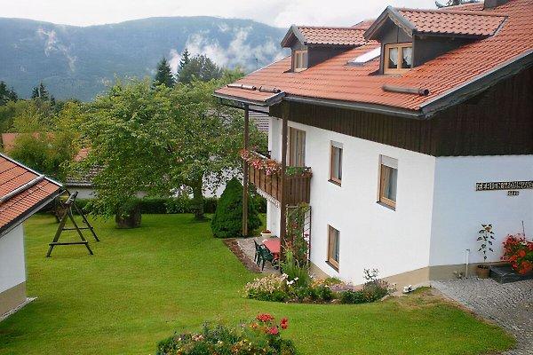 Appartement à Mauth - Image 1