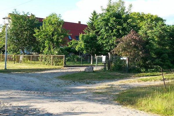 Maison de vacances à Hohen Demzin - Image 1