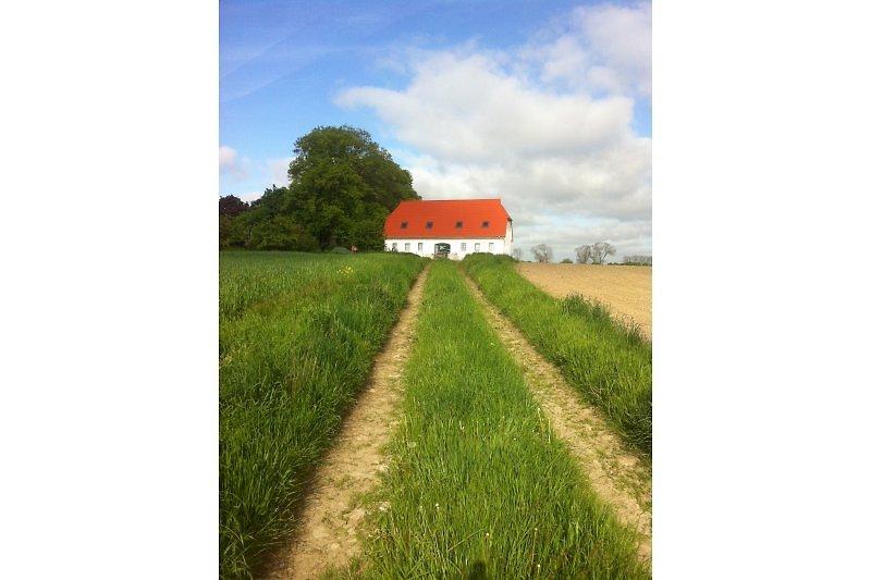 Unser Ferienhaus mit eigenem Feldweg