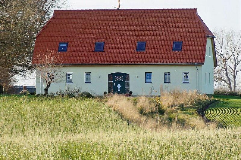 Ferienhaus zwischen Schlei und Ostsee