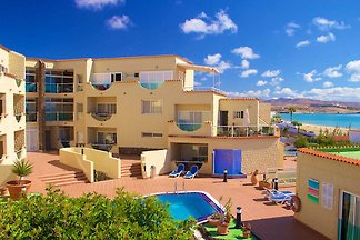 Beautiful apartment on the ground floor, just 50 meters from the beach, with 2 bedrooms, swimming pool and private terrace. The flat is suitable and equipped for up to 4 people.
