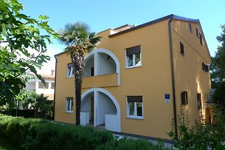 **** Family Apartment Seka ****