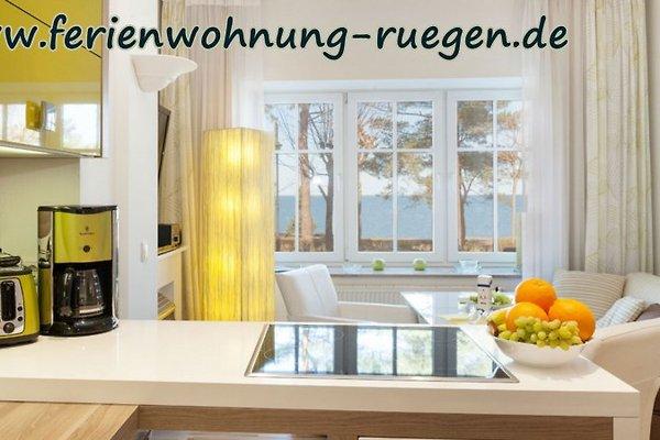 Appartement à Binz - Image 1