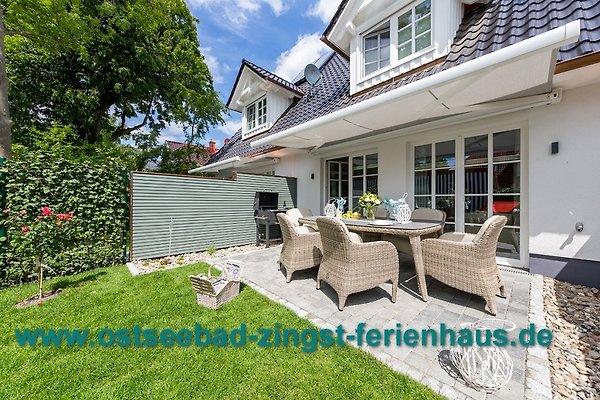 luxus ferienhaus traumzeit ii ferienhaus in zingst mieten. Black Bedroom Furniture Sets. Home Design Ideas