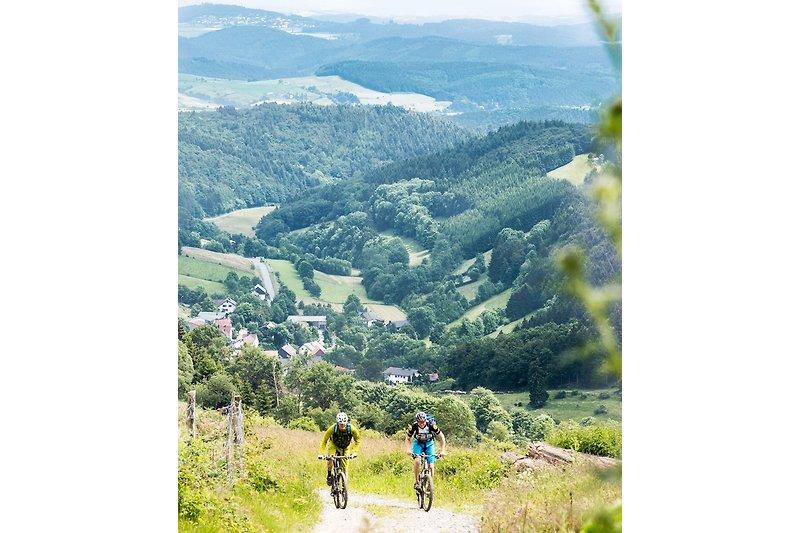 Wir begrüßen Sie ganz herzlich in der wunderschönen Urlaubsregion Winterberg. Wir sprechen Deutsch, Englisch, Französisch u. Niederländisch