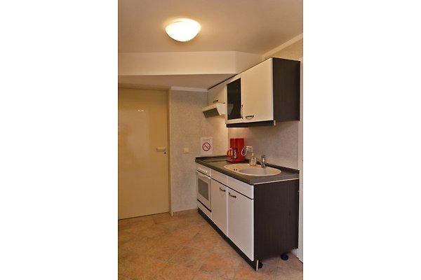 ferienwhg 2 zi zentral im gr nen ferienwohnung in berlin pankow mieten. Black Bedroom Furniture Sets. Home Design Ideas