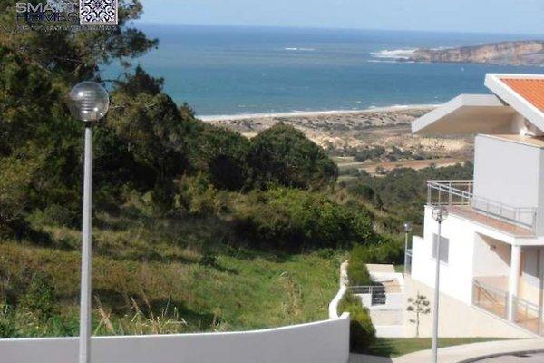 VISION in Serra da Pescaria - Bild 1