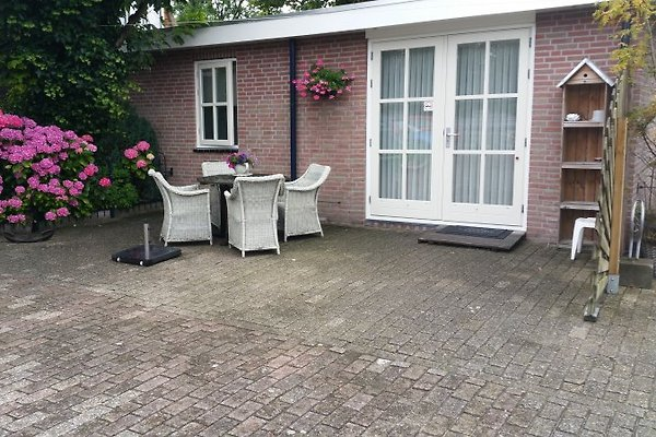 Martinus in Egmond aan Zee - immagine 1