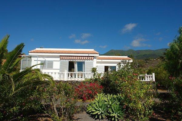 Casa Victoria à Los Llanos de Aridane - Image 1