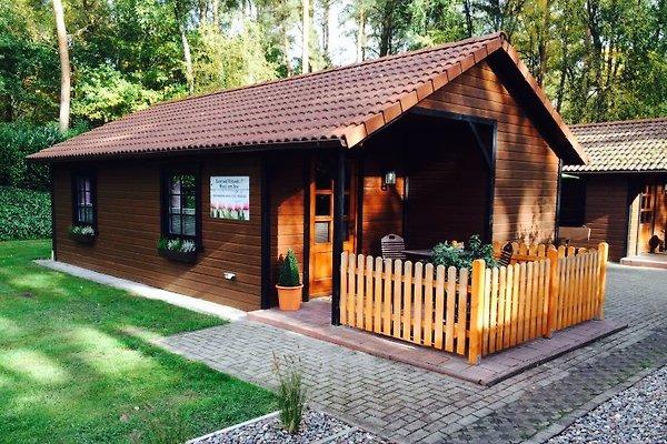 Casa de vacaciones en Dwergte - imágen 1