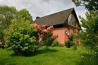 Holiday home in Norgaardholz