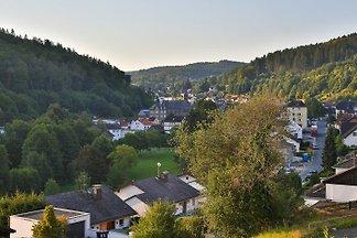 Holiday flat in Schmitten