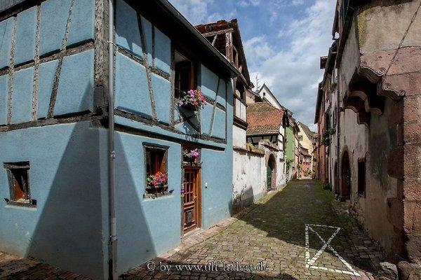 Ferienhaus Hissla Riquewihr in Riquewihr - Bild 1