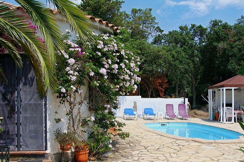 Haus und Poolbereich
