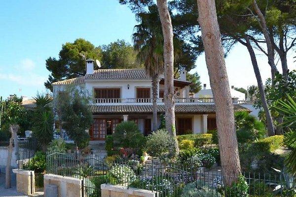 116 appartements de vacances Playa de Muro à Playa de Muro - Image 1