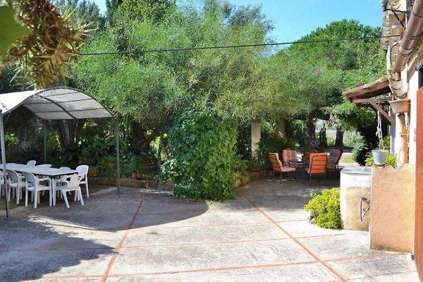 063 Llubi Finca Mallorca à Llubi - Image 1