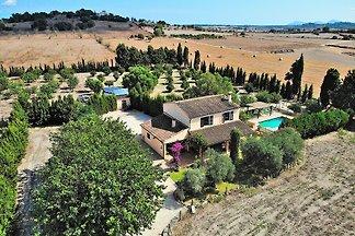 Castellet Finca Santa Margalida 120