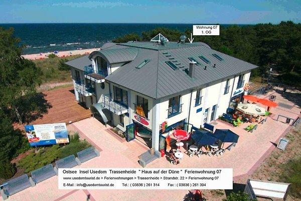 Apartamento en Trassenheide - imágen 1