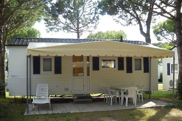 Maison de vacances à Lido di Jesolo - Image 1