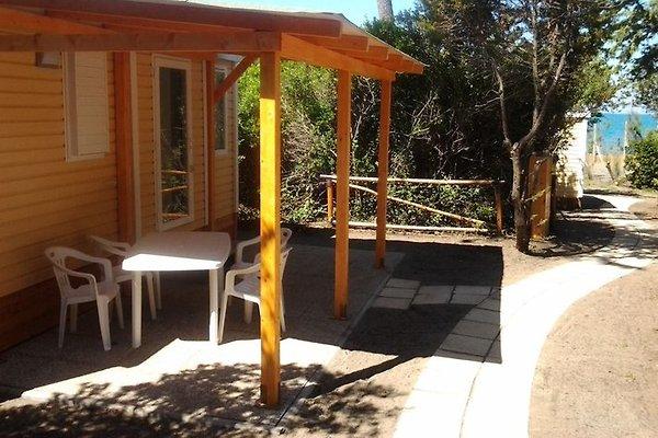 Casa de vacaciones en Cecina - imágen 1