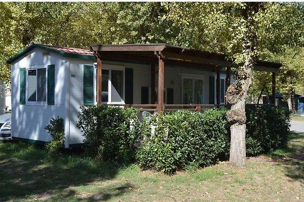 Maison de vacances à Lido di Pomposa - Image 1