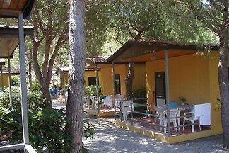 Vakantiehuis in Nisporto