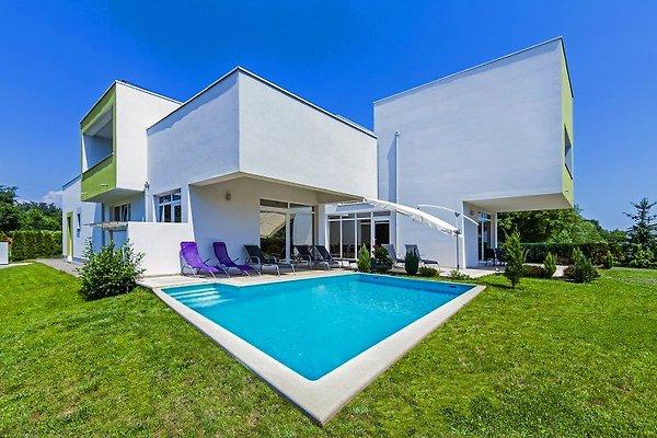 Villa Kate Zminj en Žminj - imágen 1