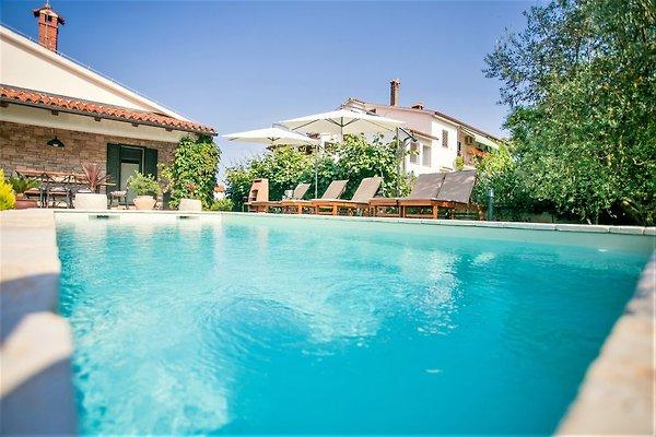 Villa Marinela Tar in Tar-Vabriga - immagine 1