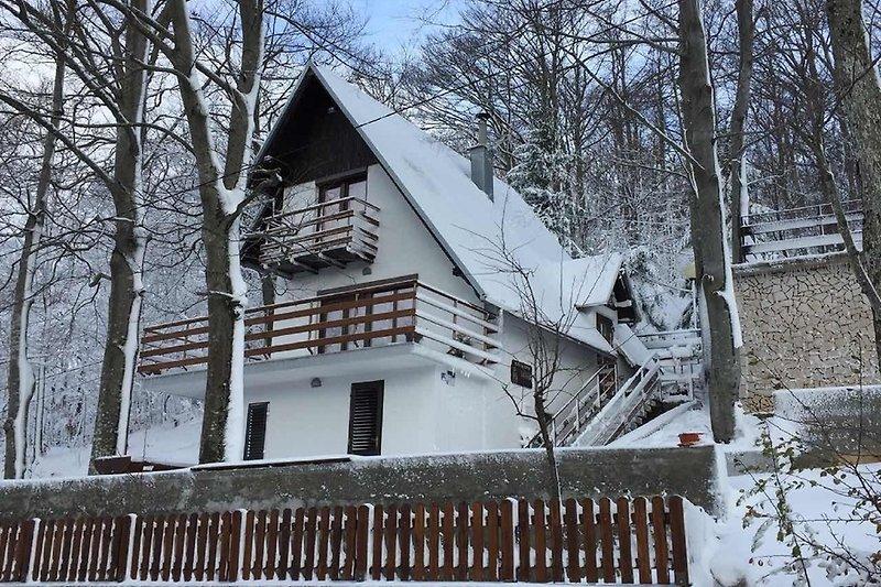 Holiday house Vanda