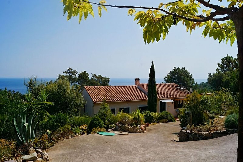 Villa DOMISE