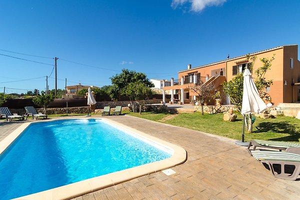 Maison de vacances à S'Horta - Image 1