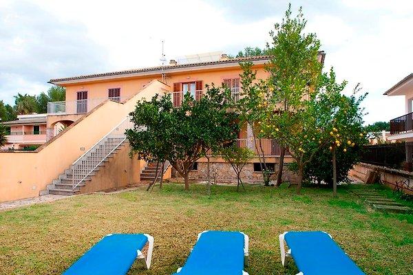 Appartamento in Port d`Alcúdia - immagine 1