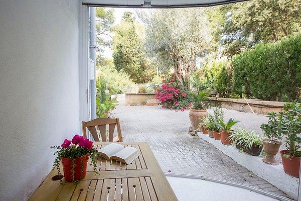Appartement à Alcudia - Image 1