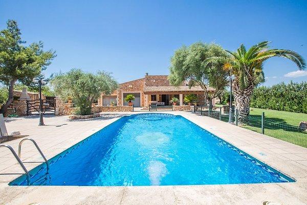 Casa vacanze in Campos - immagine 1