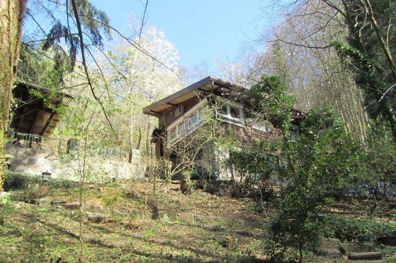 Haus und Grundstück