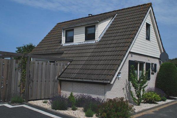 Maison Grevelingen - Ouddorp à Ouddorp - Image 1