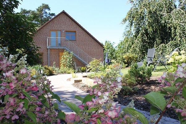 Casa vacanze in Wietze - immagine 1