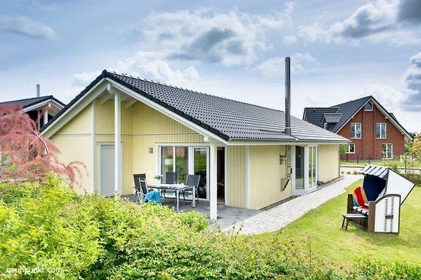 Holzhaus Palu - KF4a in Kappeln - Bild 1