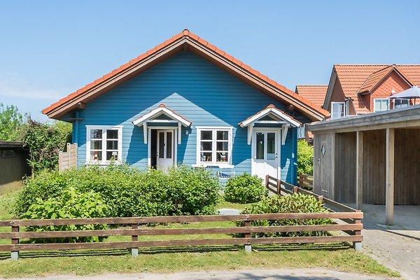 Das blaue Haus in Nieby - FNO in Nieby - Bild 1